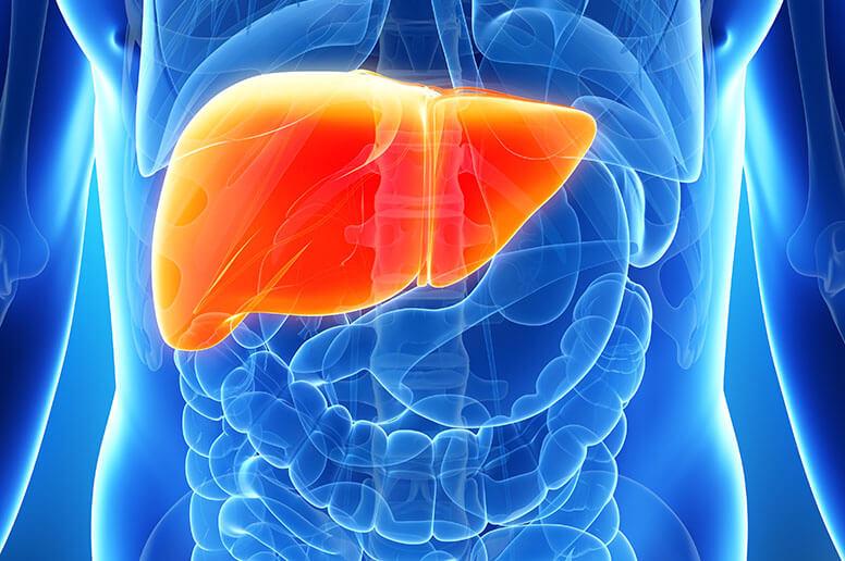 Liver-Transplant-Programs